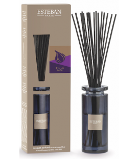 ESTEBAN DIFFUSER BOUQUET INITIAL FIGUE