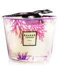 BAOBAB CORAL PERSEUS CANDLE