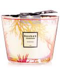 BAOBAB CORAL PERSEUS